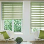 Reagan-Lime-Duplex-Blind